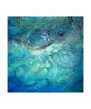 Abalone Photographic Print by Caroline Ashwood