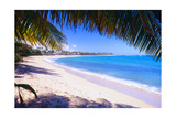 Beach View from Under a Palm Tree, Puerto Rico Reproduction photographique par George Oze