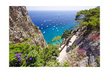 Scenic Trail, Capri, Italy Photographic Print by George Oze