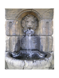 Lions Head Fountain Photographic Print by Herb Dickinson