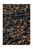 Shore Stones Photographic Print by Steve Gadomski