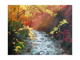 Oconoluftee River Photographic Print by Herb Dickinson