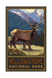 Yellowstone National Park Elk Photographic Print by Paul A Lanquist