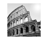 Black And White Photo Of Colosseum, Rome Italy Fotodruck von Annmarie Young
