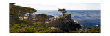 Coastal Panorama at Pebble Beach Photographic Print by George Oze