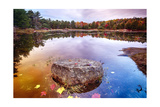 Rock in a Pond, Acadia National Park, Maine Photographic Print by George Oze