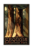 Sequoia National Park Giant Trees Pal 793 Posters by Paul A Lanquist