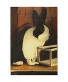 The Black and White Dutch Rabbit Reproduction photographique par Diane Strain