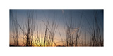 Nachusa Grasslands Sunset Photographic Print by Steve Gadomski