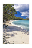 Trunk Bay Seclusion, US Virgin Islands Photographic Print by George Oze