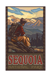 Mountain Hiker in Sequoia National Park Pal 794 Photographic Print by Paul A Lanquist
