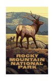 Rocky Mountain National Park Elk Pal 3070 Photographic Print by Paul A Lanquist
