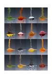 1 tablespoon flavor collage Fotografisk trykk av Steve Gadomski