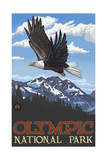 Olympic National Park EGS Eagle pal 1792 Photographic Print by Paul A Lanquist