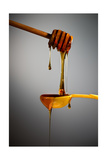 1 Tablespoon Honey Photographic Print by Steve Gadomski