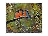 Birds Robins Family Portrait Poster par Blenda Tyvoll
