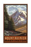Mount Rainier with Wildflowers Fotodruck von Paul A Lanquist