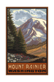 Mount Rainier with Wildflowers Photographic Print by Paul A Lanquist