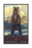 Yellowstone National Park Grizzly Photographic Print by Paul A Lanquist