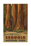 Sequoia National Park The Senate Pal 1224 Photographic Print by Paul A Lanquist