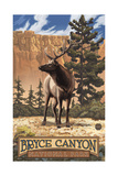Bryce Canyon Elk PAL1117 Photographic Print by Paul A Lanquist