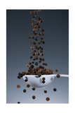 1 Tablespoon Black Pepper Photographic Print by Steve Gadomski