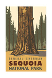 General Sherman- Sequoia National Park PAL-1230 Photographic Print by Paul A Lanquist