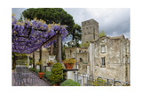 Pergola with Blooming Wisteria, Ravello, Italy Photographic Print by George Oze