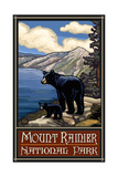 Mount Rainier National Park Black Bear and Cub Photographic Print by Paul A Lanquist
