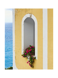 Flower in Window at Seaside, Positano, Italy Photographic Print by George Oze
