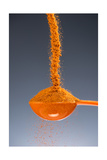1 Tablespoon Cayenne Pepper Photographic Print by Steve Gadomski