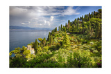 Terraced Hillside at the Coast, Portofino, Italy Photographic Print by George Oze