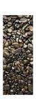 Black River Stones Portrait Photographic Print by Steve Gadomski