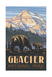 PAL 411 Glacier National Park Grizzly and Cub Photographic Print by Paul A Lanquist