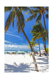 Palms and Umbrellas, Isla Mujeres, Mexico Photographic Print by George Oze