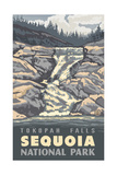 Tokopah Falls-Sequoia National Park Pal 1231 Photographic Print by Paul A Lanquist
