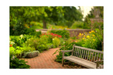 Chicago Botanic Garden Bench Photographic Print by Steve Gadomski