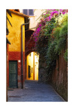 Colorful Alley in Portofino Stampa fotografica di George Oze