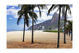 Palm Trees on Ipanema Beach Photographic Print by George Oze