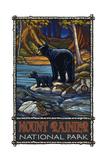 Mount Rainier National Park Black Bear in Stream Photographic Print by Paul A Lanquist