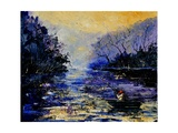 Fishing Pond Photographic Print by  Ledent