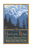 Hurricane Ridge Olympic National Park Pal 019 Photographic Print by Paul A Lanquist