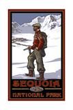 Sequoia National Park Climber Pal 1217 Photographic Print by Paul A Lanquist