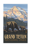 Grizzly and Cub Grand Teton Pal 642 Photographic Print by Paul A Lanquist