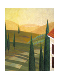 Tuscany Vinnicola Photographic Print by Herb Dickinson