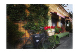 Bicycle at a Bistro, Napa Valley, California Photographic Print by George Oze