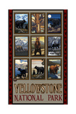 Yellowstone Animal Collage Pal 2760 Photographic Print by Paul A Lanquist