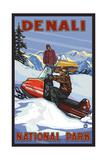 Denali National Park SMB Snowmobiliers pal 3052 Reprodukcja zdjęcia autor Paul A Lanquist
