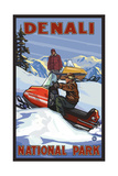 Denali National Park SMB Snowmobiliers pal 3052 Photographic Print by Paul A Lanquist