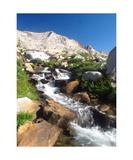 Nine Lakes Basin Outlet Stream Photographic Print by Ronald A Dahlquist